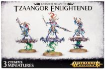 Tzaangor Enlightened/Skyfires