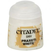 Краска Dry: Praxeti White
