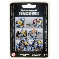 Space Wolves Primaris Upgrades (2018)